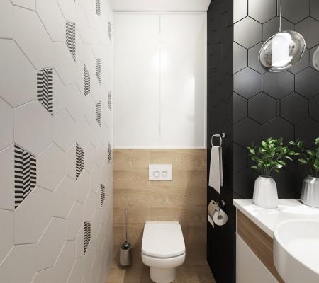 tualet_iun_2018_1.jpg